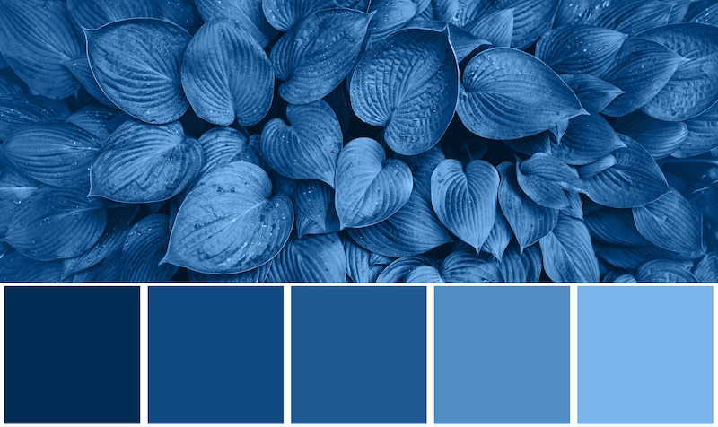 How to Build a Monochromatic Palette