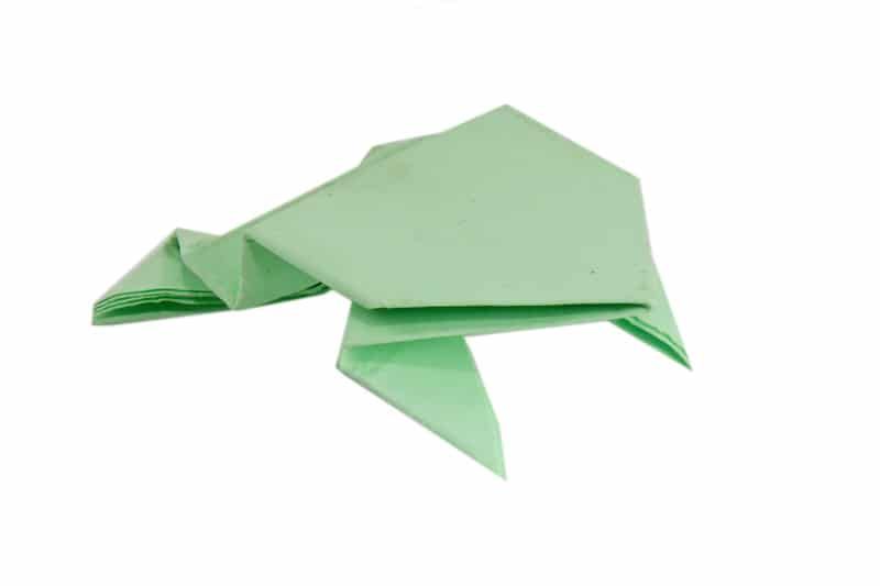 An Action Origami Frog